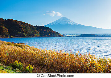 Mt. Fuji with lake in autumn