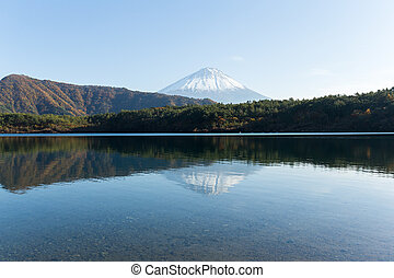 Mt Fuji with reflection on Saiko Lake