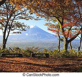 mt. fuji, z, spaście kolor, w, japonia