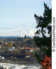 Mt Hood in Distance