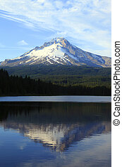 Mt. Hood reflection. - A reflection of Mt. Hood on Trillium...