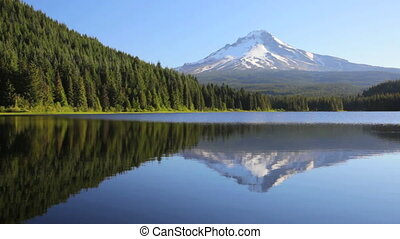 Mt. Hood Reflection - Mount Hood reflecting off Trillium ...