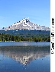 Mt Hood, view from Trillium Lake