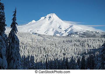 Mt. Hood, winter, Oregon
