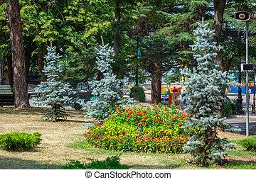 mtatsminda, mountain., flores, árboles, bombora, o, parque