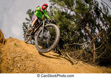 MTB downhill biking in the forest.