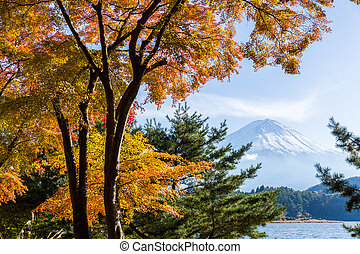 Mt.Fuji in autumn at Lake kawaguchiko in japan