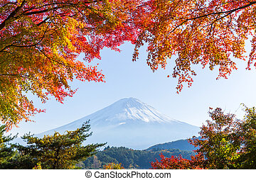 Mt.Fuji in autumn at Lake kawaguchiko