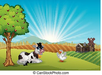 mucca, e, oca, in, il, fattoria, a, mattina