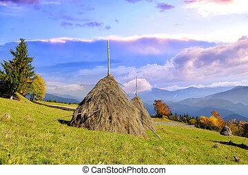 mucchi fieno, da, uno, villaggio montagna, in, montagne