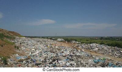 mucha, miasto, żywieniowy, antena, odpadki, jadło, na,...