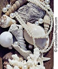 mucho, de, conchas de mar, y, perls, en, arte, lío