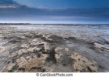 mud at low tide on North sea coast