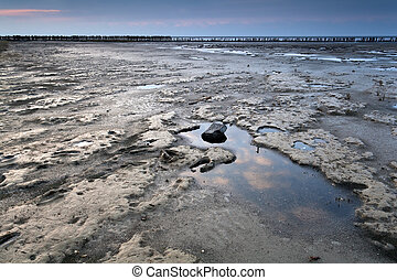 mud at low tide on North sea