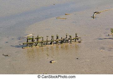 Mud at Low Tide