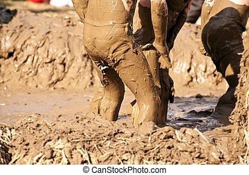 Close up of a mud bath