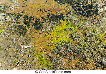 Mud Flats Background - Background shot of mud flats in ...