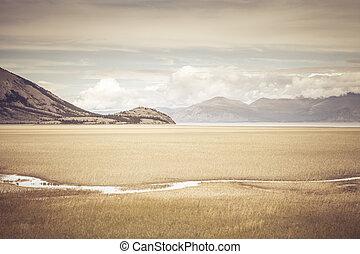 Mud flats near Kluane Lake