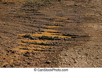 Mountain bike traces in the wet mud