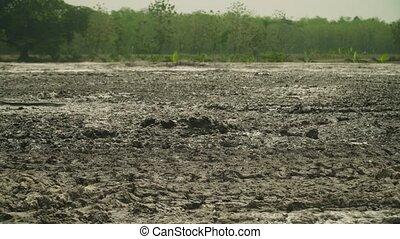 Mud volcano Bledug Kuwu, Indonesia - Mud volcano bledug...