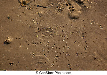 Brown mud with craters, background