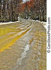 Muddy Dirt Road