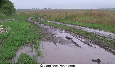 Muddy dirt road with puddles through the field in rain