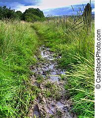 Muddy English country footpath after heavy rain