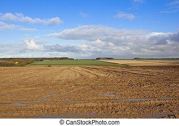 muddy field in autumn
