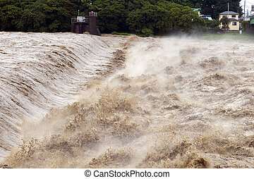Raging muddy waters of the Fuji River during a Typhoon