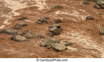 Muddy rapids flowing around rocks - High angle view of brown...