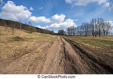 Muddy road during the spring