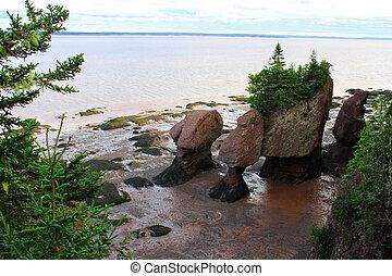 Hopewell Rocks, New Brunswick, Canada - Muddy water with the...