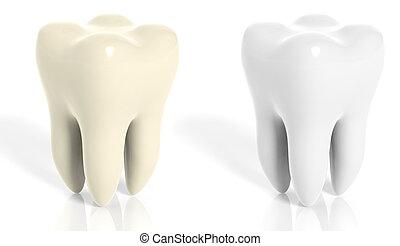 muela, aislado, fondo amarillo, dientes, blanco