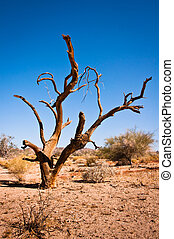 muerte, árbol