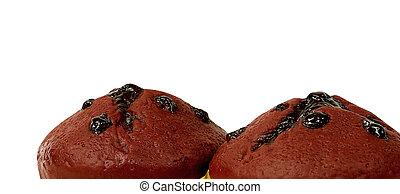 muffin chocolate close up