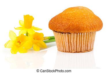 muffins, isolado, branco, fundo