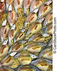 Mugilidae on threshing basket - The mugilidae on threshing...
