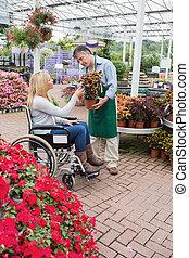 mujer, en, sílla de ruedas, compra, un, flor