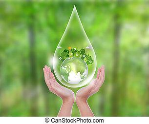 mujer, entrega, bosque verde, asimiento, gota agua, de, eco, amistoso, e