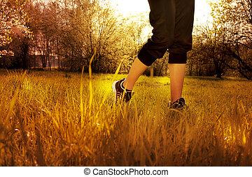 mujer, entrenamiento, corredor, salud, atleta, condición física, pies, corriente, primer plano, empujoncito, shoe., pasto o césped, concept., salida del sol