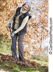 mujer, hojas, focus), pasar el rastrillo, aire libre, (...
