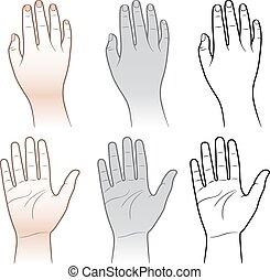 mujer, hombre, manos, aislado, blanco