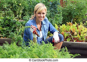 mujer, jardín vegetal