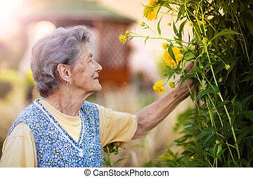 mujer mayor, jardín