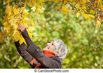 mujer mayor, tenencia, rama de árbol