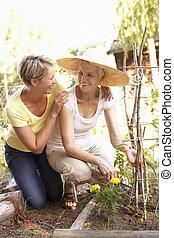 mujer mayor, y, adulto, hija, relajante, en, jardín