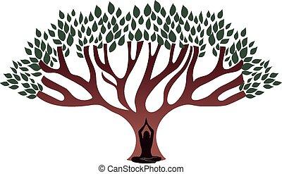 mujer, medite, debajo, el, grande, grueso, árbol