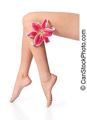 mujer, piernas, dio cera, perfecto, liso, flor