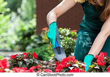 mujer, plantación, flores